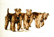 """Three in a Row"" Airedale Terrier Limited Edition Print by Roger Inman"