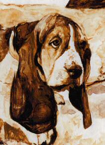 "Closeup of Basset Hound head from ""No Great Plans"""