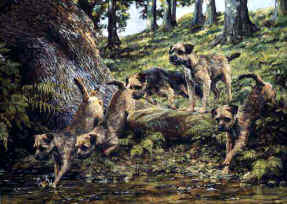 """Across the Rill"" Border Terriers Fine Art Limited Edition Print by Roger Inman"