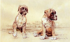 """Attack Imminent"" Boxer Pups Limited Edition Print by British Artist Roger Inman"