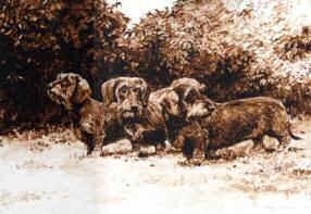 "Wire Haired Dachshund Original Sepia Watercolor ""Shoulder to Shoulder"" by Roger Inman"