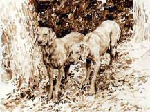 """On the Hunt"" Weimaraner Limited Edition Print from the Original Sepia Watercolor by British artist Roger Inman"
